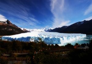 Flora del Parque de los glaciares