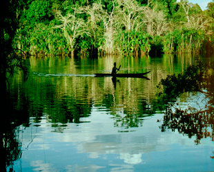 Amazonía Ecuador