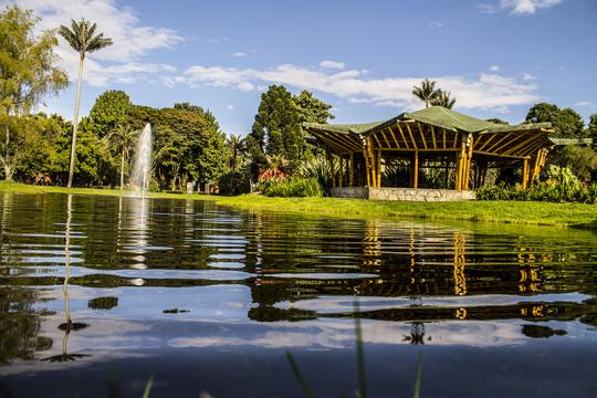 5 destinos en Latinoamérica que podrás visitar de manera gratuita