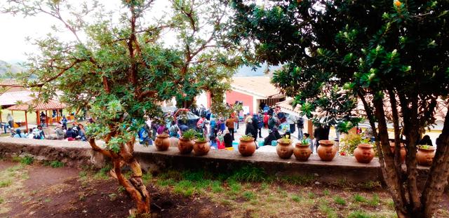 Aguas Medicinales de San Pedro