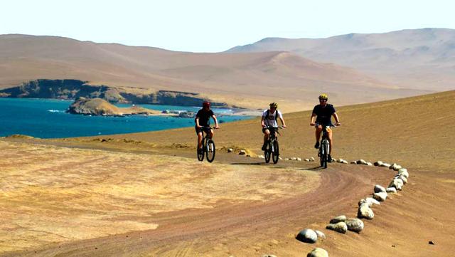 Aventura en la Reserva Paracas