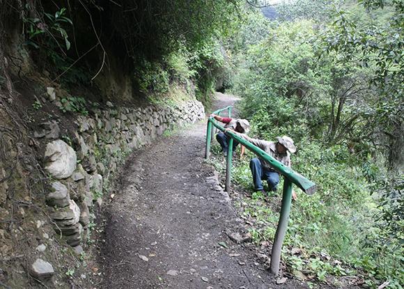 Desde mañana miércoles primero de febrero se cerrará el Camino Inca hacia MachuPicchu por mantenimiento