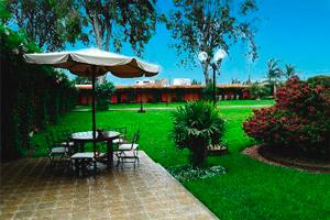 Jardín del Hotel Casa Andina Classic Chincha Sausal