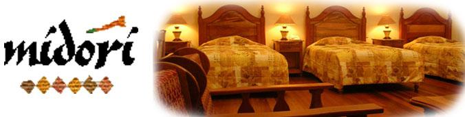 Hotel Midori