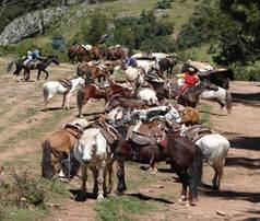 Cabalgata en Espinar - Cusco