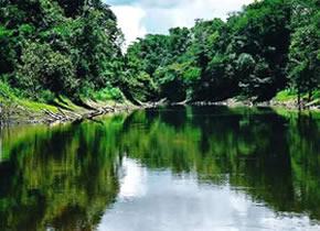 crucero en el rio amazonas
