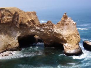 islas ballestas y reservas de paracas