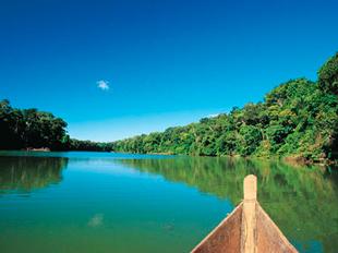 Tour en el rio Tahuayo
